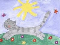 Котик и солнышко