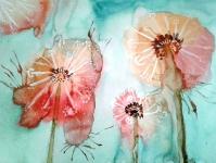 Розовые одуванчики