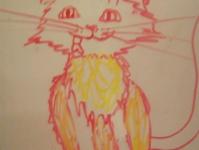 Кіт Бандит